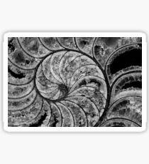 calcified nautilus, bw Sticker