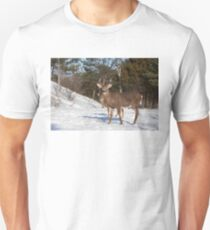 White-tailed deer buck and fawn in the winter snow Unisex T-Shirt