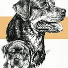 Rottweiler Father & Son by BarbBarcikKeith