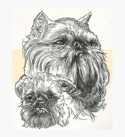 Brussels Griffon Father & Son Photographic Print
