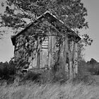 Forgotten Barn by Cynthia48