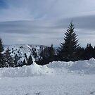Ski trail by Ana Belaj