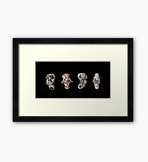 Pit-Bull puppies Framed Print