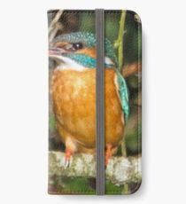 Female Kingfisher  iPhone Wallet/Case/Skin