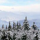 Fraser Valley Mountain View by JOSEPHMAZZUCCO