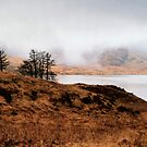 Foggy Day At Loch Arklet by Jeremy Lavender Photography