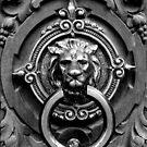 Lion Door Knocker by agentgreen
