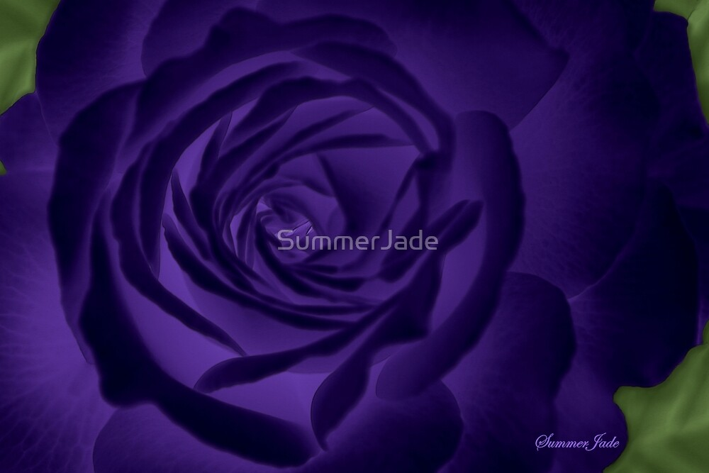 Here in My Deep Purple Dream ~ Rose by SummerJade