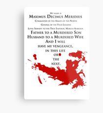 Gladiator - My name is Maximus Decimus Meridius... Metal Print