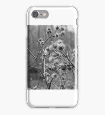 Thistles iPhone Case/Skin
