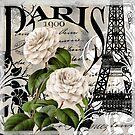 Paris Blanc II by mindydidit