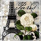 Paris Blanc I by mindydidit