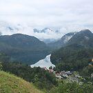 Alps and Alpsee by Elena Skvortsova