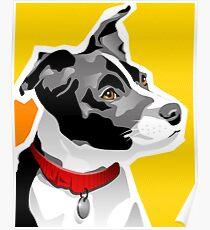 SPEEDY - Boston Rat Terrier Poster