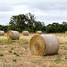 Hay Bales at Yan Yean 2 by Pauline Tims