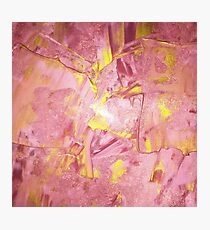 Pink and Gold Paint Photographic Print