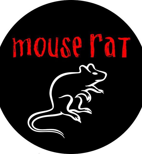 Mouse Rat by GASSYCAKES