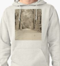 Southern Illinois Winter Scene 3_ Dec 2012 Pullover Hoodie