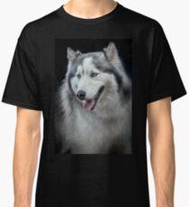 Siberian Husky  Classic T-Shirt