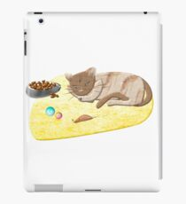 Sleeping Cat iPad Case/Skin