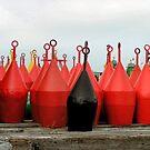Buoys line up ready for the job by patjila