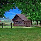Out On The Farm by RickDavis