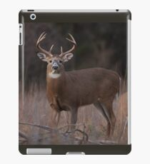 White-tailed deer buck with huge neck in autumn rut iPad Case/Skin