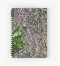 Bark with moss Spiral Notebook