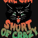 Crazy Cat by wytrab8