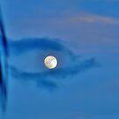 eye in the sky by Stephen Burke