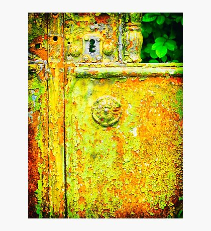 The rusty and peeling gate Photographic Print