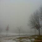 Through fog and snow by MarianBendeth