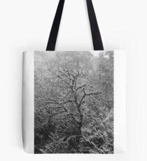 Das Studium eines Baumes Tote Bag