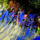 Reflections of Fall ! by Elfriede Fulda