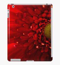 Red Macro Daisy Flower iPad Case/Skin