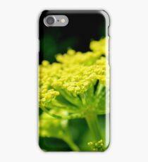 Wild Parsnip iPhone Case/Skin
