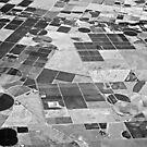 Crop Circles and Squares by TonyCrehan