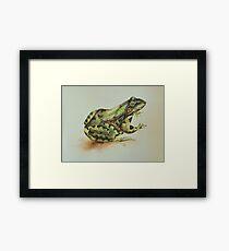Amphibian  Framed Print