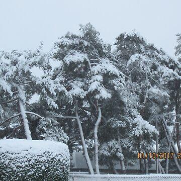 Snow Listing Trees by AuntieBarbie