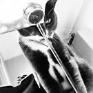Cat and water  by Susanne Schmitz