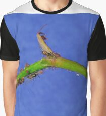 Rose Aphids Graphic T-Shirt