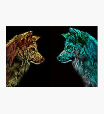 Wolves - Day and Night Photographic Print