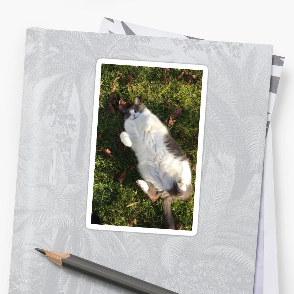 FAT CATT by Lexinicole64
