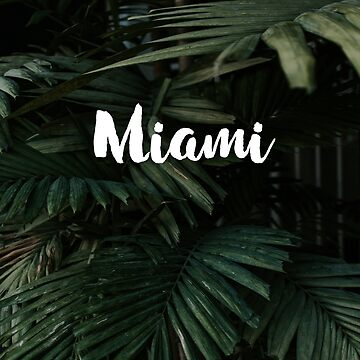 Miami Palms by DeniseLives