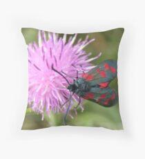 Six-spot Burnet Moth Throw Pillow