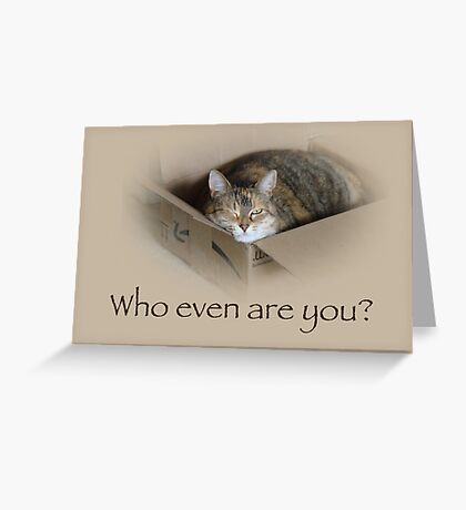 Who Even Are You - Lily the Cat Greeting Card