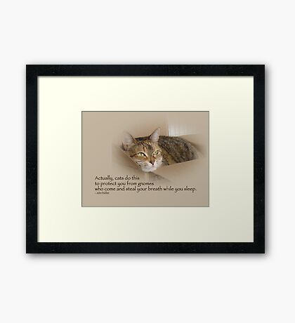 Cats Protecting You From Gnomes - Lily the Cat Framed Print