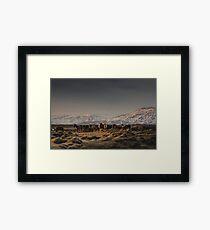 Icelandic Horses I Framed Print