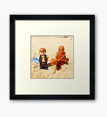 Han & Chewy At The Beach Framed Print