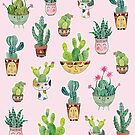 Cactus Pots Personalities by Janet Broxon